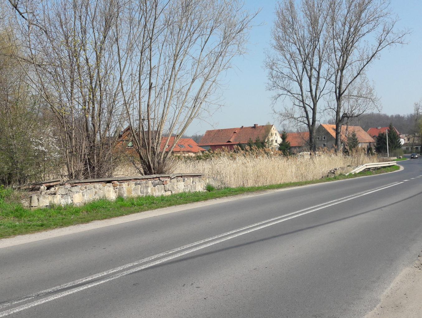 """Dotacja z """"FOGR"""" szansą na renowację zbiornika wodnego przy Grunwaldzkiej?"""
